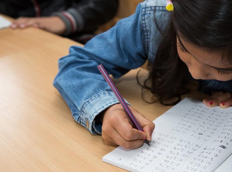 Mladi Romi uče matematiku uz podršku, Vladičin Han
